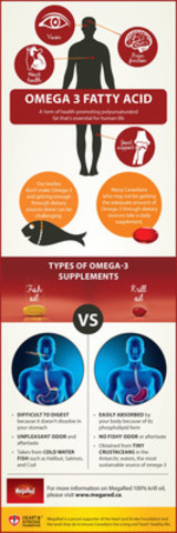 Omega 3 Fatty Acid - A Form of Health-Promoting Polyunsaturated Fat Essential for Human Life (CNW Group/Reckitt Benckiser)
