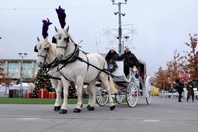 Cadbury surprises Torontonians with free horse-drawn carriage rides this weekend at the Shops of Don Mills. Rides are taking place this Saturday and Sunday from 1-5 PM. Photo: Darren Goldstein (CNW Group/Cadbury Dairy Milk)