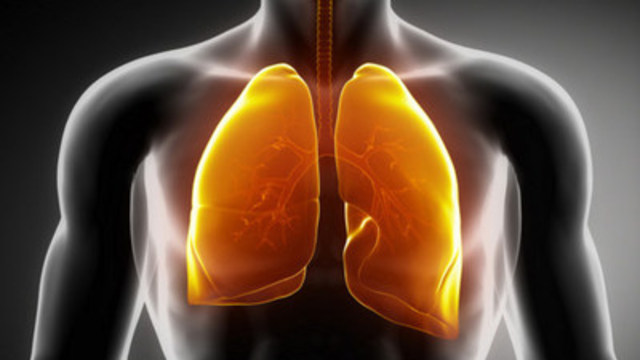 Breathing Easier: Pharma Successfully Leveraging Smoother EU Regulatory Specs (CNW Group/StockSocial.com)