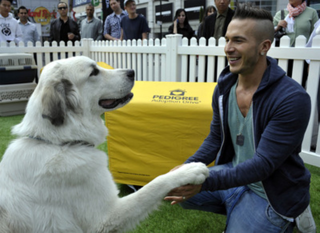 Platinum selling, Juno Award-winning pop music icon and producer Shawn Desman joined forces with the makers of PEDIGREE® to launch the fifth annual PEDIGREE ADOPTION DRIVE® campaign Wednesday, September 19, 2012. Pictured here: Shawn Desman and Barney, a one year old Pyrenees, at Yonge-Dundas Square, Toronto, ON. Additional photos available upon request. ®Registered Trademarks. © Mars Canada Inc., 2012. All rights reserved. (CNW Group/PEDIGREE ADOPTION DRIVE)