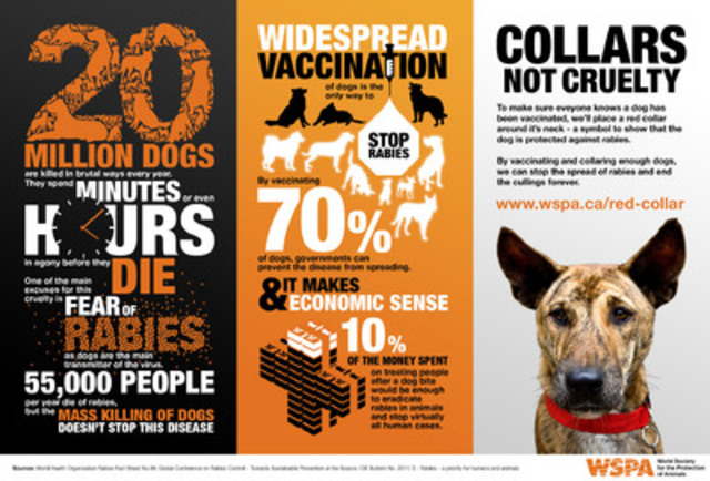 Download this infographic from WSPA with facts and figures related to their Collars Not Cruelty campaign. (CNW Group/World Society for the Protection of Animals)