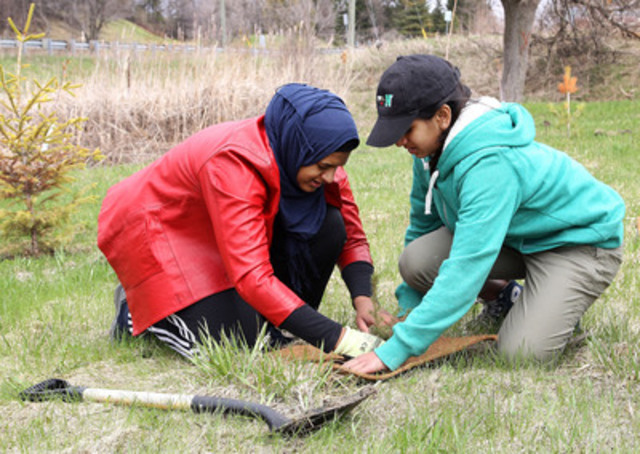 More than 300 community volunteers planted over 2,000 trees as part of Trees Ontario's annual community tree planting event in the Barrhaven neighbourhood of Ottawa. (CNW Group/Trees Ontario)