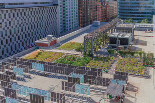 The Palais des congrès de Montréal's Urban agriculture Lab will be unveiled on Septembre 30, 2016. (CNW Group/Palais des congrès de Montréal)