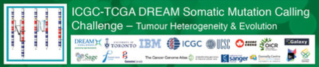 ICGC-TCGA DREAM Somatic Mutation Calling Challenge (CNW Group/Ontario Institute for Cancer Research)