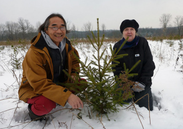 "Grey County artists and self professed ""tree huggers"" Jim H. Louie and Judy Lowry are Trees Ontario's latest Green Leaders. The couple planted nearly 45,000 new trees on part of their 135-acre property through the government of Ontario's 50 Million Tree Program. (CNW Group/Trees Ontario)"
