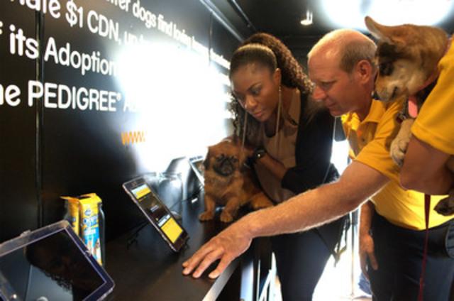 Le 14 septembre 2011, Jully Black et l'équipe de Kevin Martin ont lancé la quatrième campagne annuelle d'adoption PEDIGREE(MD) au Yonge-Dundas Square, afin de démontrer que les chiens hébergés en refuge sont de bons animaux de compagnie. Photo, de gauche à droite : Daisy (chienne vivant en refuge), Jully Black, Kevin Martin et Cabo (chiot) (Groupe CNW/PEDIGREE ADOPTION DRIVE)