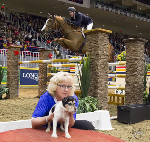 Mclain Ward topped Saturday's matinee competition by winning the $15,000 Canine-Equine Challenge, presented by the Toronto Star, riding his new mount, Carneyhaugh Manx.  (CNW Group/Royal Agricultural Winter Fair)