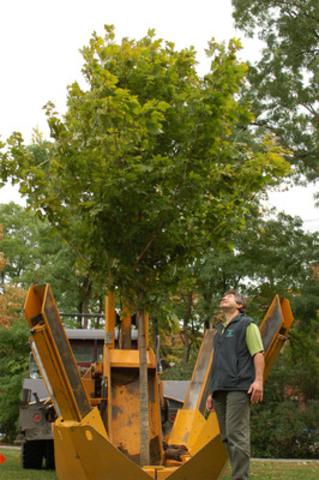 Michael Rosen, président d'Arbres Canada, contemple le premier arbre planté à l'occasion de la Journée nationale de l'arbre au Canada (Groupe CNW/Tree Canada)