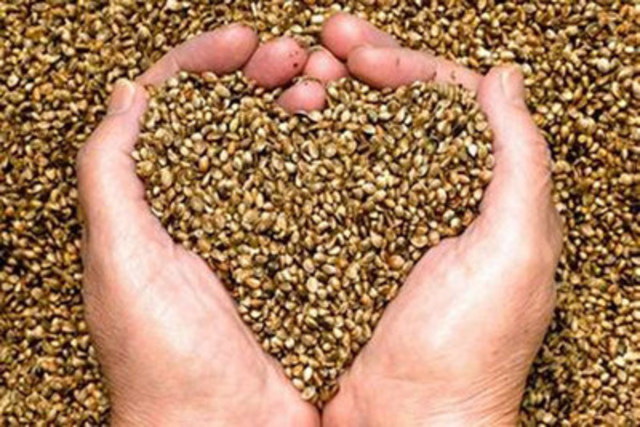 For a simple way to be healthier in 2016, look no further than hemp. This superfood comes in many different forms – raw and shelled seed, ground flour, milk or juice – and has been shown to improve heart health. For more information on how to add hemp to your balanced diet, visit chfa.ca. (CNW Group/Canadian Health Food Association)