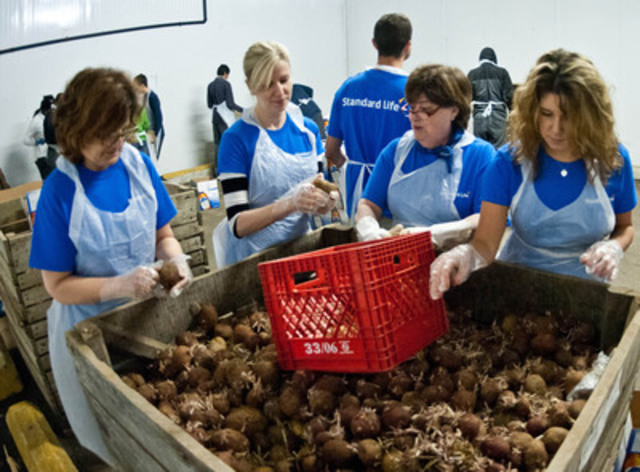 Standard Life employees volunteering at Moisson Montréal food bank. (CNW Group/STANDARD LIFE)