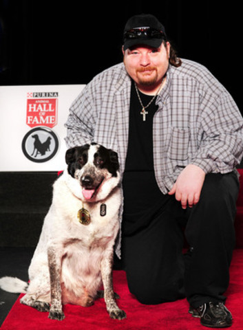 Snickers, a 4 year old Border Collie/Pointer cross from Oshawa, Ontario, was inducted into the Purina Animal Hall of Fame today for saving the life of Greg Gould. Snickers broke out the back door and barked until paramedics were called to assist Mr. Gould, who had fallen unconscious on his living room floor. (CNW Group/Purina Animal Hall of Fame)