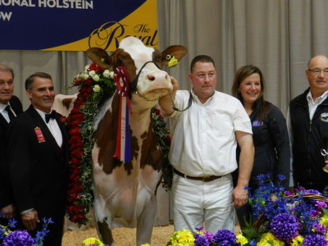 Calli-Red and Tom and Kelli Cull (CNW Group/Royal Agricultural Winter Fair)