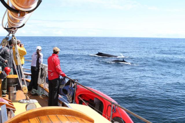 Croisière en bateau à voiles à Haida Gwaii, C.-B. - Kevin J. Smith/Maple Leaf Adventures (Groupe CNW/Canadian Tourism Commission)