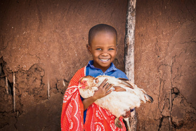 Gifts of Hens and Roosters can provide a family with an ongoing source of nutrition and income. (CNW Group/World Vision Canada)