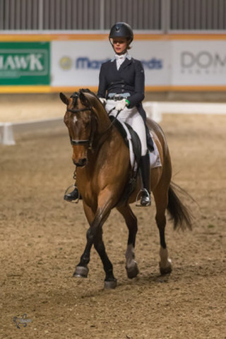 """""""Leah Wilkins impressed in her Royal Horse Show® debut to place second in the $20,000 Royal Invitational Dressage Cup, presented by Butternut Ridge, riding Fabian J.S.""""  (CNW Group/Royal Agricultural Winter Fair)"""