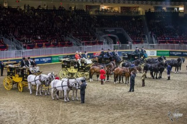 Four of North America's top coaches received special invitation to compete in the Green Meadows division at Toronto's iconic Royal Horse Show. Photo by Ben Radvanyi Photography (CNW Group/Royal Agricultural Winter Fair)