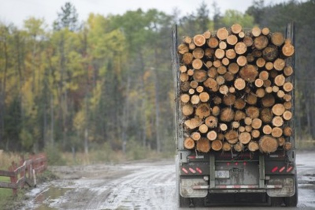 A truck carrying logs to the mill (CNW Group/EACOM)