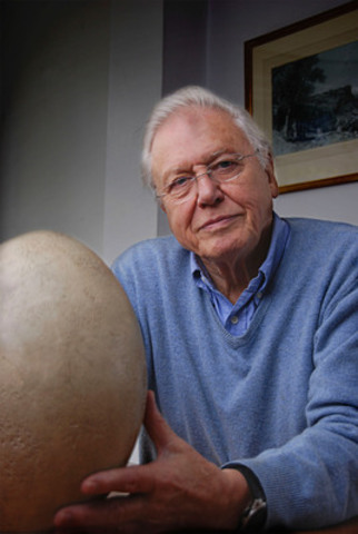 Broadcaster and naturalist Attenborough next to the elephant bird egg he acquired 50-years ago in Madagascar. (CNW Group/TVO)