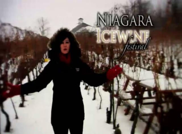 Video:Niagara Icewine Festival - Jan 2012