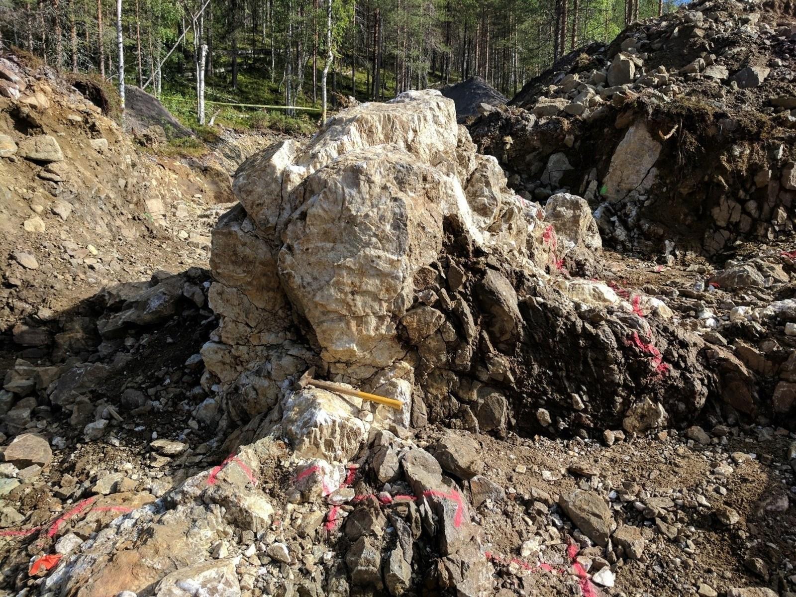 Aamurusko West; Quartz veins in trench.