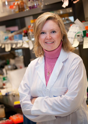 Dr. Catherine O'Brien and her colleagues are the first to study the role of intracellular bacteria - bacteria found inside colon cancer cells - in colorectal cancer development and metastases (spread). Early research shows that intracellular bacteria may be playing a key role in the formation and spread of colon cancer. (Photo credit: PhotographicsUHN) (CNW Group/Canadian Cancer Society (National Office))