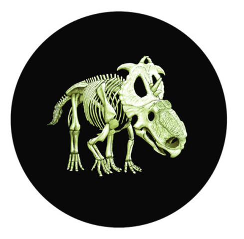 "The Royal Canadian Mint's 2012 25-cent ""Glow-in-the-Dark"" Prehistoric Animals - Pachyrhinosaurus Lakustai collector coin, named ""Most Innovative Coin"" by Krause Publications' 2014 Coin of the Year Awards (In the dark) (CNW Group/Royal Canadian Mint)"