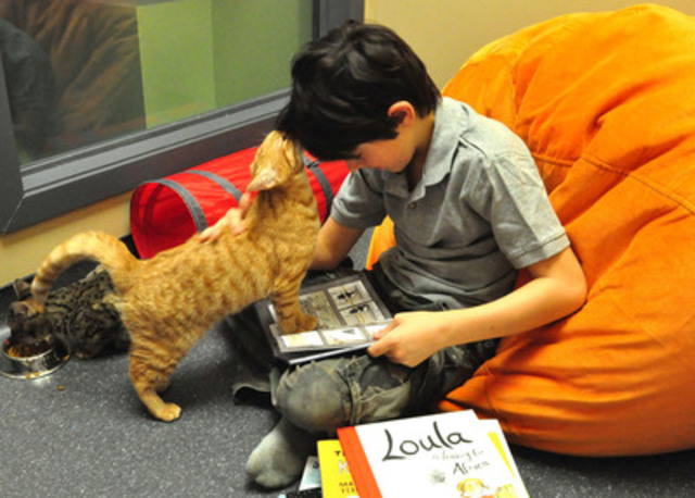 The Kitty-Litter-a-ture Program helps promote the adoption of homeless cats too! (CNW Group/Ontario Veterinary Medical Association)