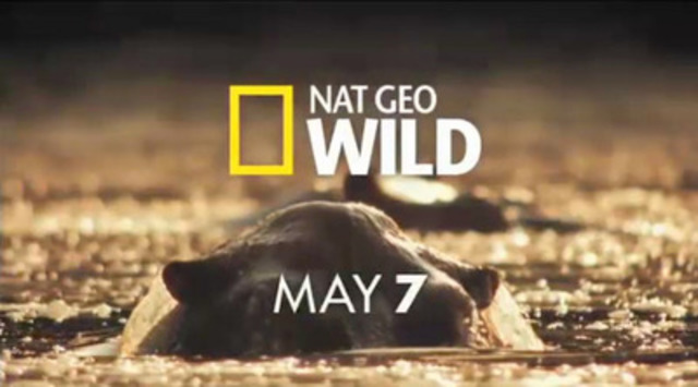 Launching May 7 is Nat Geo Wild: a new channel with programming sure to make viewers roar