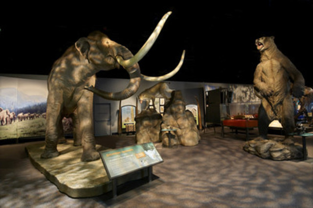 Mammoths and Mastodons at the Ontario Science Centre (CNW Group/Ontario Science Centre)