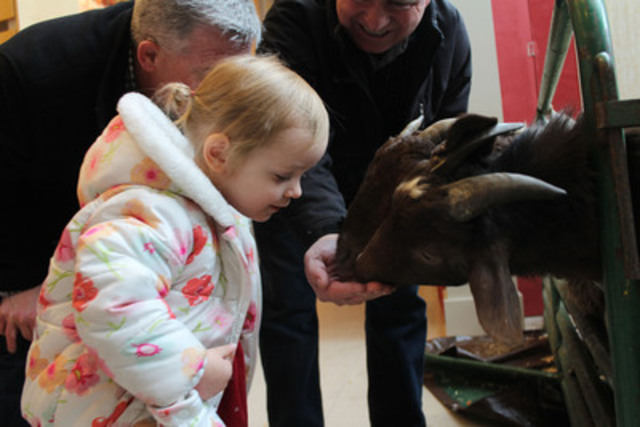 Elise Vincent, 2, feeds goats with her grandfather at a holiday party held by World Vision to celebrate its popular Gift Catalogue which features real charity donations Canadians can give as gifts, like goats. (CNW Group/World Vision Canada)