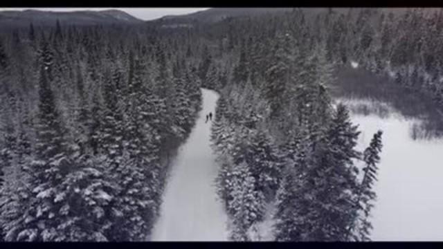 VIDEO: Tiger Paw(MD) Ice & Snow(MC) 3