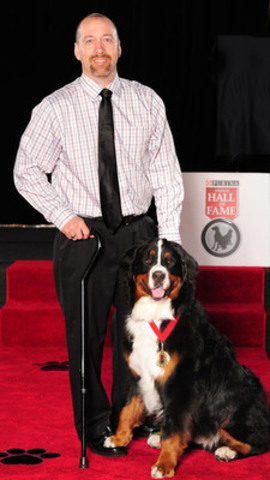 Bella, a 2 year old Bernese Mountain Dog from Milton, Nova Scotia was inducted into the Purina Animal Hall of Fame today for saving the life of Chris Larocque. When the Larocque's kitchen caught on fire, and Chris could not get out due to mobility-related injuries, he called for Bella, grabbed onto her collar, and she pulled him out of the burning house. (CNW Group/Purina Animal Hall of Fame)