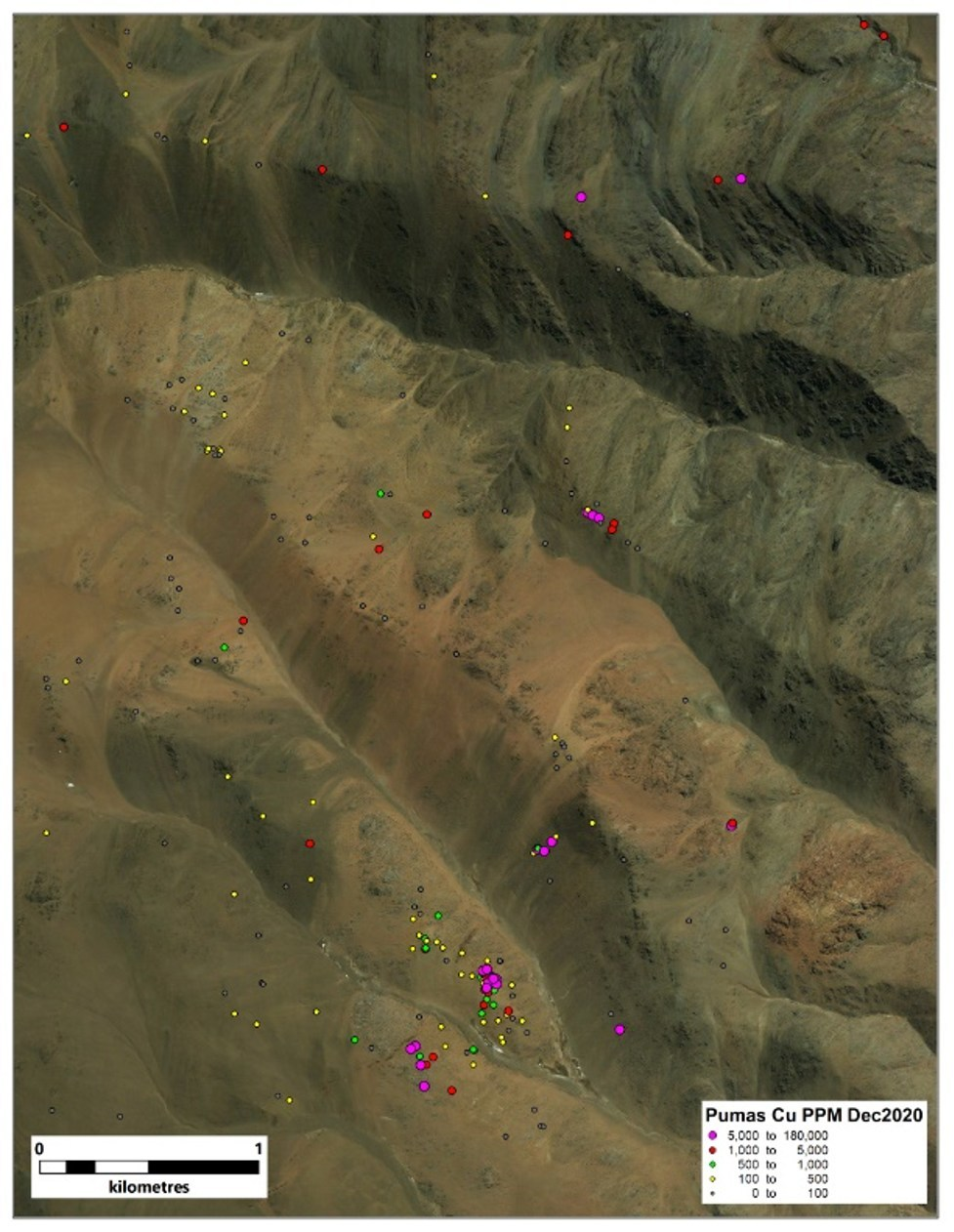 Figure 5. Cu values at Los Pumas (CNW Group/Sable Resources Ltd.)