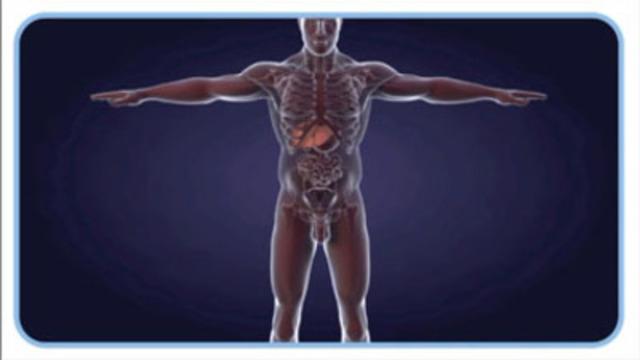 Vidéo : HCV Video Series: Individualised HCV