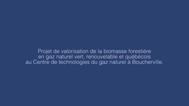 Projet de valorisation de la biomasse forestière en gaz naturel