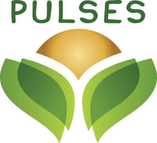 Global Pulse Brand Logo (CNW Group/Pulse Canada)