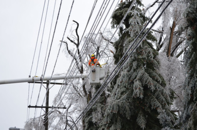 Toronto Hydro at Work: ice storm restoration efforts - Islington Avenue. Toronto Hydro's forester Dave Knight works in icy conditions on Islington Avenue, south of Eglinton Avenue. Toronto Hydro crews have restored power to approximately 108,000 customers. (CNW Group/Toronto Hydro Corporation)