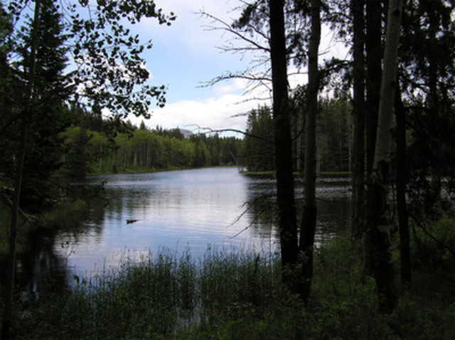 A quiet lake view on the Lusicich property (CNW Group/Nature Conservancy of Canada)