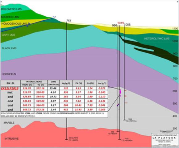 Map 3: Rincón del Caído Composite Vertical Cross-section (CNW Group/Excellon Resources Inc.)