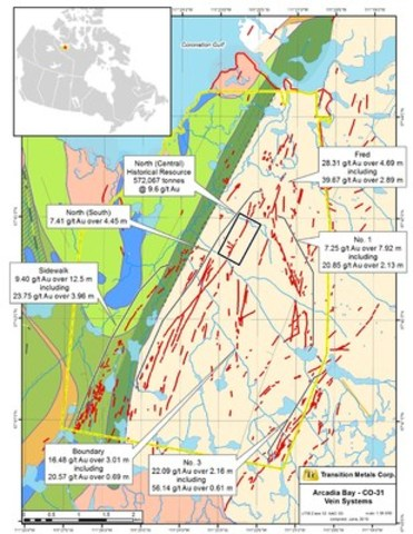 Figure 1: Geology and Vein Systems on the Arcadia Bay Property based on historical data (CNW Group/Transition Metals Corp.)