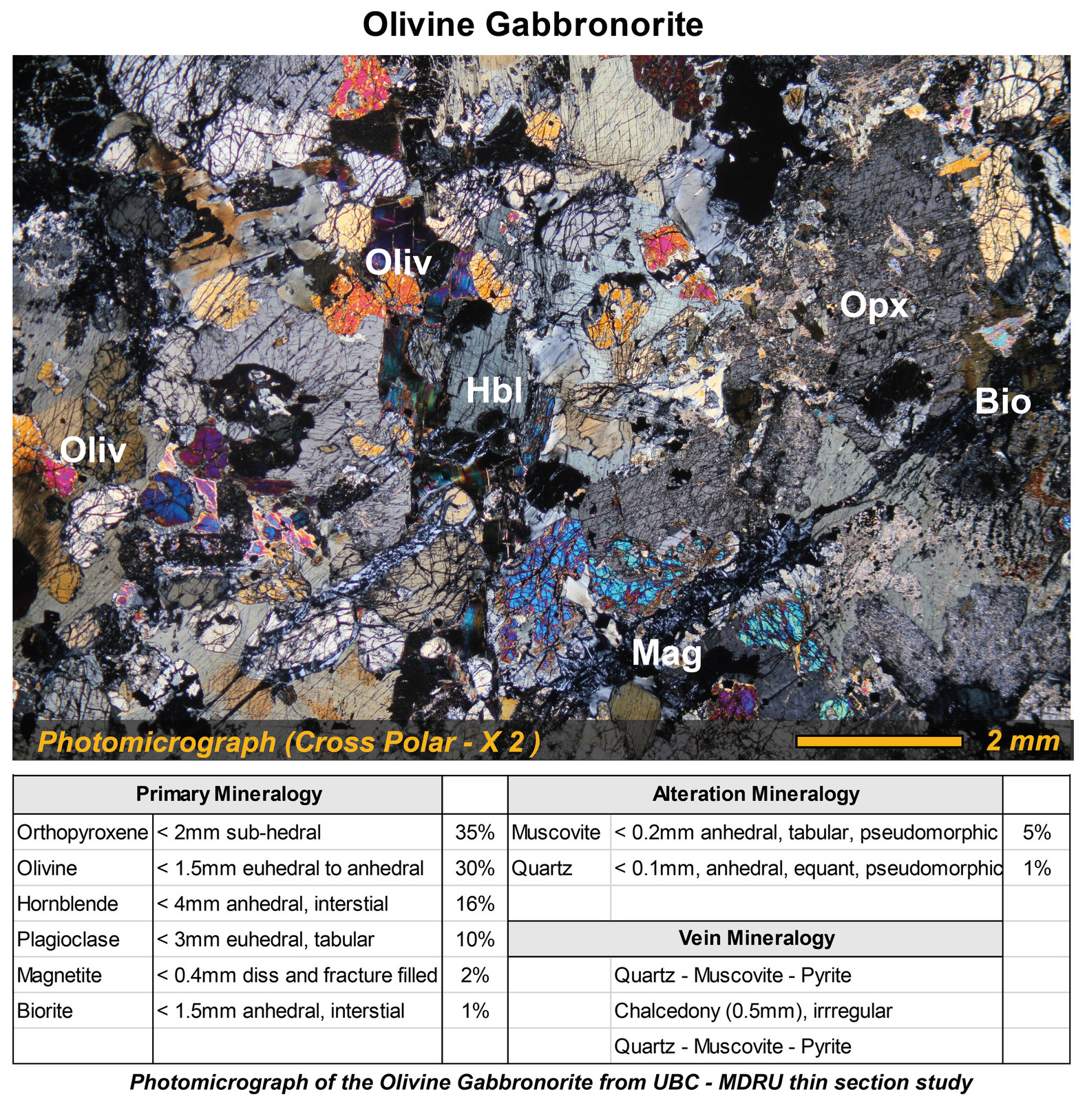 Photomicrograph of the Olivine Gabbronorite from UBC - MDRU thin section study
