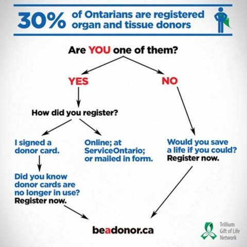 Trillium Gift of Life Network announced a milestone: 30 per cent of Ontario residents are registered organ and tissue donors. (CNW Group/Trillium Gift of Life Network)