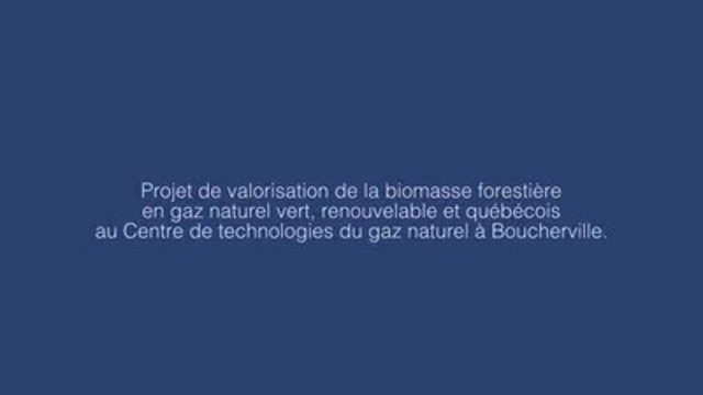 Project aimed at converting forestry biomass into natural gas