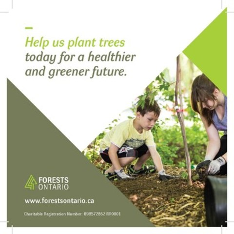 Until March 31st, visit a LCBO location across Ontario and donate to tree planting efforts with donation boxes in support of Forests Ontario. (CNW Group/Forests Ontario)