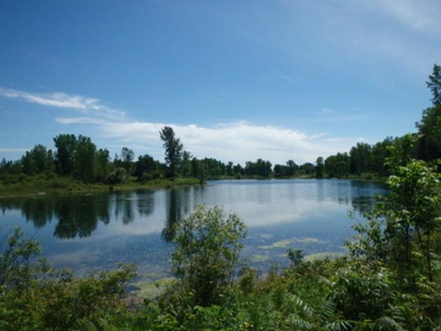 Lac Fauvel, Blainville © Nature-Action Québec (Groupe CNW/Fondation Hydro-Québec pour l'environnement)
