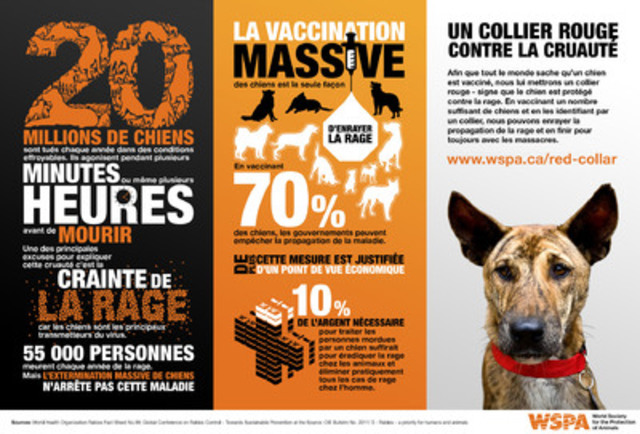 Download this infographic from WSPA with facts and figures related to their Collars Not Cruelty campaign. (Groupe CNW/World Society for the Protection of Animals)