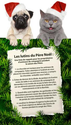 La periode des Fêtes peut être difficile pour les animaux de compagnie (Groupe CNW/Canadian Animal Health Institute)