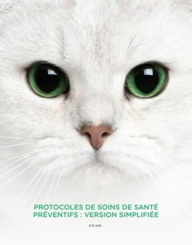 Les chats sont des maîtres du camouflage. C'est pourquoi il est difficile de déterminer à quel moment ils doivent être vus par le vétérinaire. Observez les soins de santé préventifs : faire voir votre chat par un vétérinaire sur une base régulière afin de le maintenir en santé plutôt que d'attendre de traiter une maladie. (Groupe CNW/Cat Healthy)