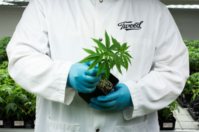 Tweed Obtains License to Supply Medical Marijuana to Canadians (CNW Group/Tweed Inc)