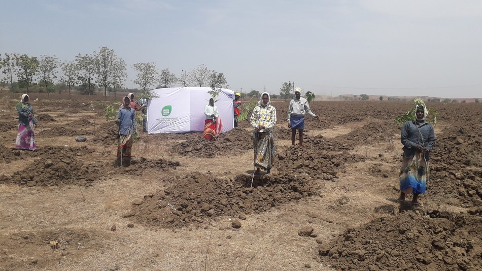 Tribals in Andhra Pradesh supported by Tata Projects planting trees under Green Thumb initiative